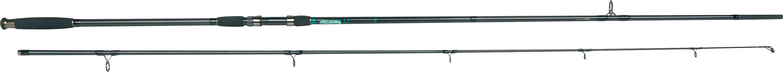 SPRO Precision carbon carp 13'/3lb